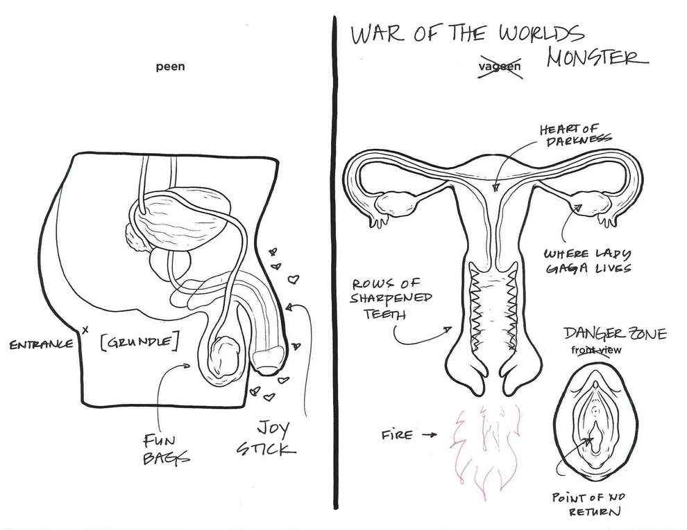 Draw And Label Diagrams Of Male And Female Reproductive System
